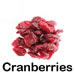 the-cranberry-walnut-protein-bar